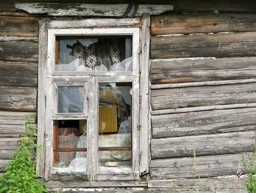 Защита деревянных окон